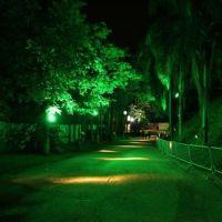 201010-sertanejo-pop-fest-001