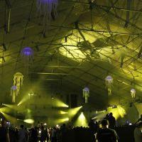 201011-ultra-music-festival-014