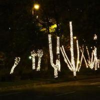201112-nata-belo-horizonte-009