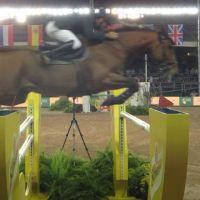 201208-athina-onassis-horse-show-03