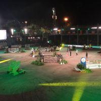 201208-athina-onassis-horse-show-09