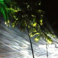 201210-paradise-weekend-01